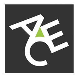 ACE European Group Logo